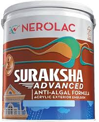 Suraksha Advanced paint prices