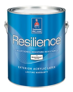 Resilience paint prices