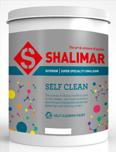 Self Clean Luxury Emulsion paint prices